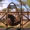 elephant-bedroom-camp8