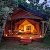 Elephant Pepper Mara Camp tented room exterior