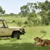 Fairmont Mara Safari Club3