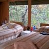 Porini Bush Camp9