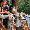 Nairobi City Excursion | Continental Travel Group