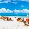 diani-beachfront