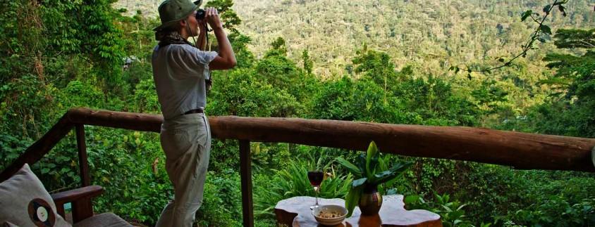 sanctuary-gorilla-forest-camp-view