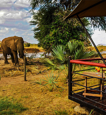 Samburu Safari Packages