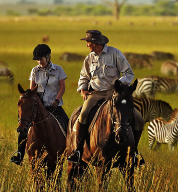 Horse-back safaris